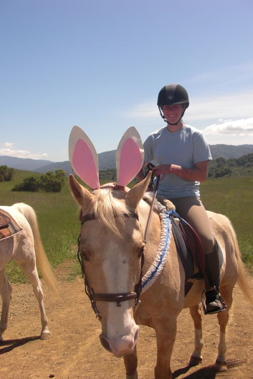 Easter Horse
