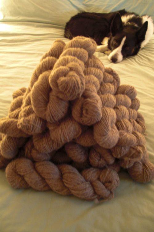 Llama fiber