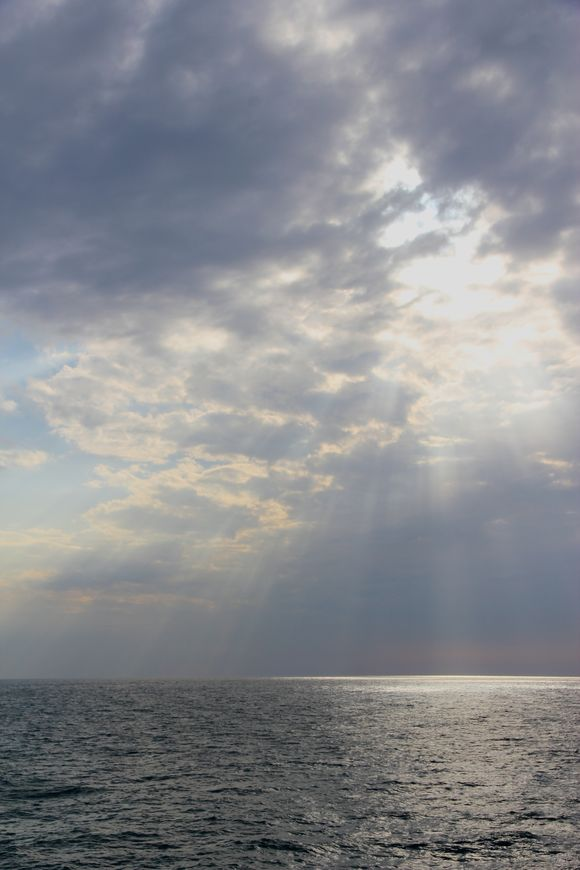 dichrotic light.jpg
