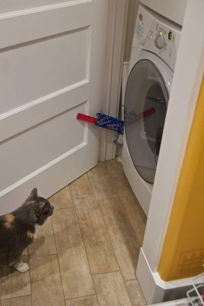 Stormy vs washing machine