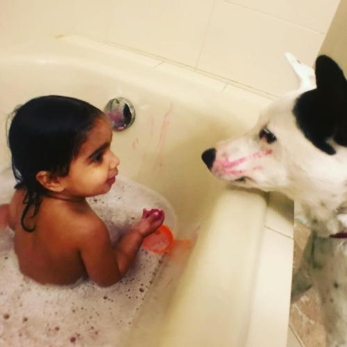 Bath puppy
