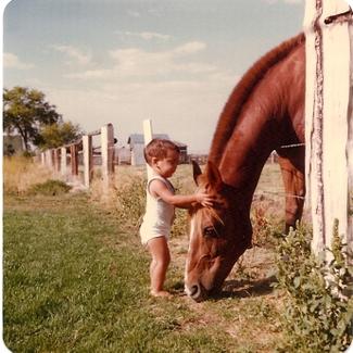 Sam_horse_877