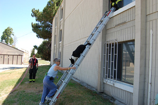 Down_ladder
