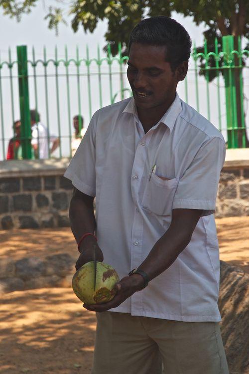 Coconut chop